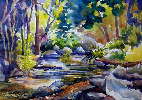 Feeling Falls at Elam-- SOLD by Therese Fowler-Bailey