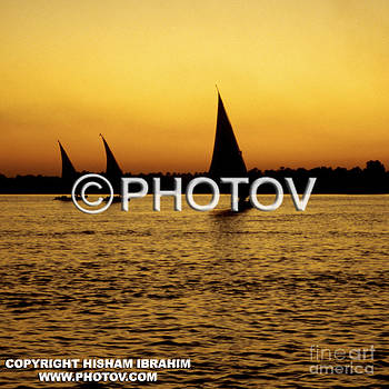 Feluccas sailing on the Nile at sunset - Cairo - Egypt by Hisham Ibrahim