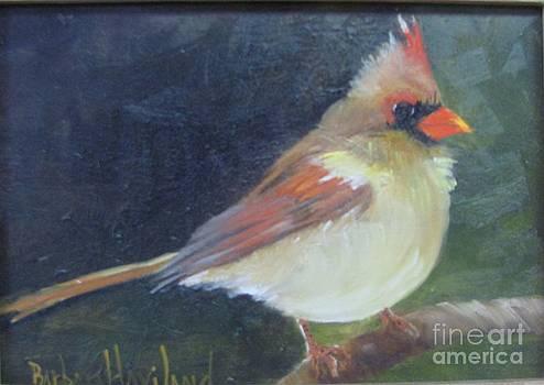 Female Cardinal by Barbara Haviland