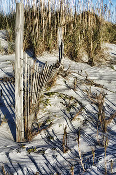 Fence and Shadows by Linda Blair