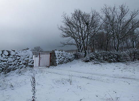 Fence and snow by Gaitero