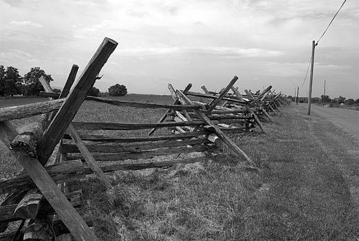 Fence at Cornfield Row  by M Hess