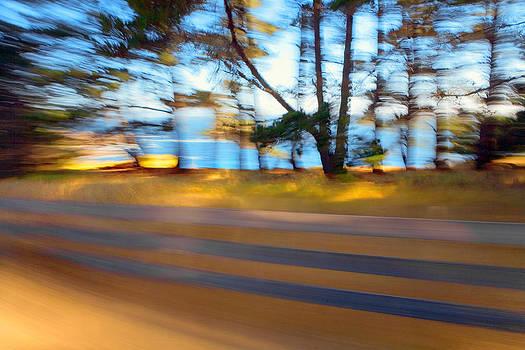 Daniel Furon - Sonoma Coast on a Summer Ride