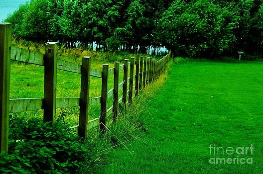 Fence by Kamgeek Photography