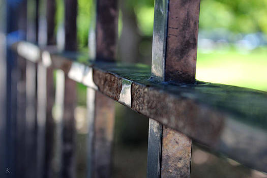Fence by Kelly Smith
