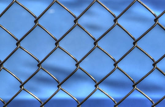 Bonnie Davidson - Fence on Blue