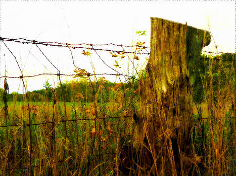 Fence Post by Patricia Erwin