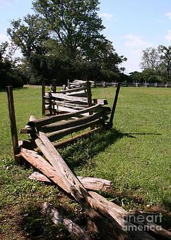 Fence rail by Bren Thompson