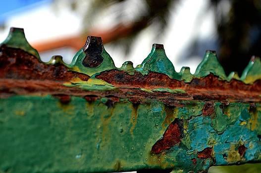 Fenced In- Ybor City 2 by Tara Miller