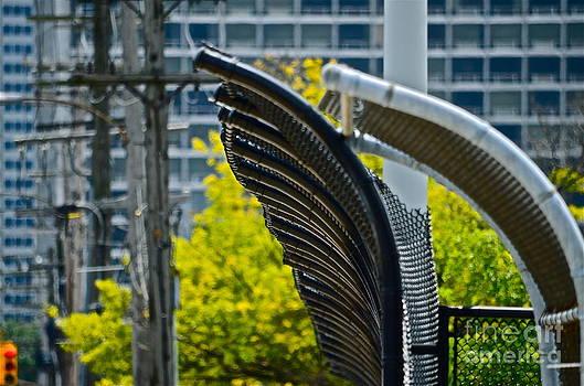 Fences by Jason Layden