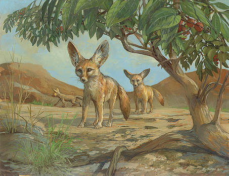 Fennec Fox by ACE Coinage painting by Michael Rothman