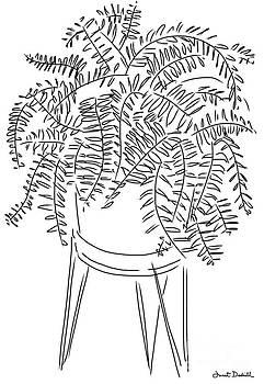 Fern Plant by Janet Dodrill