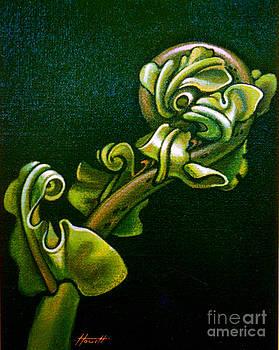 Fern Unfolding by Patricia Howitt