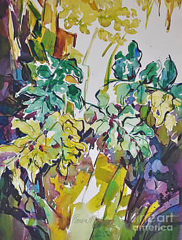 Ferns on Hot Day by Roger Parent