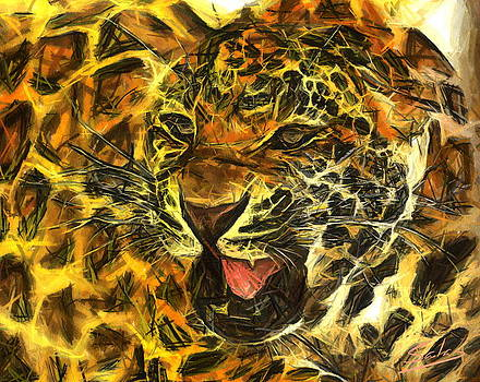 Ferocious Feline by Francisco Sanchez Salas