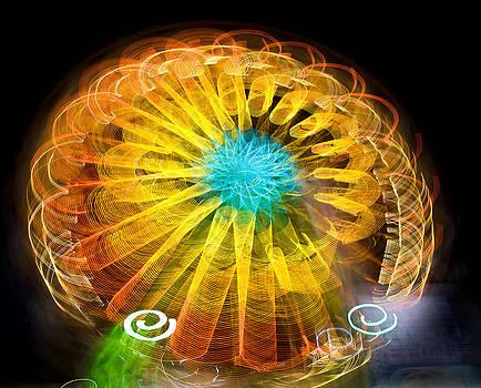 Ferris Wheel Flower by Paul DeRocker