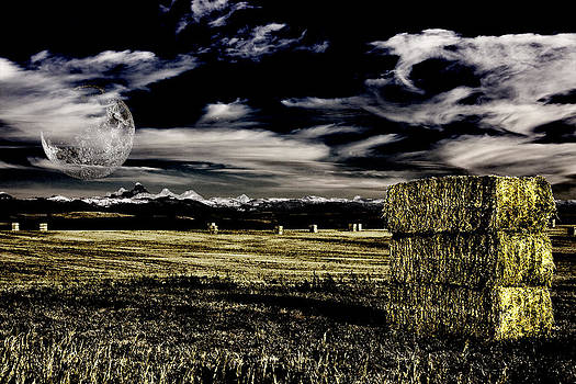 Field and hay by Bruce Rolff
