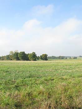 Randi Kuhne - Field in France