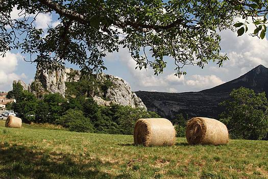 Alex Sukonkin - Field near Rougon Alpen Village