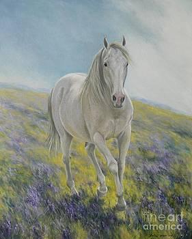 Field Of Dreams - Oscar by Louise Green