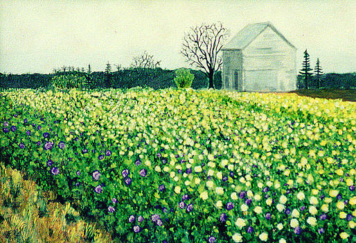 Field of Flowers by Sherrie Robins