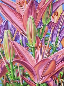Jane Girardot - Field Of Lilies