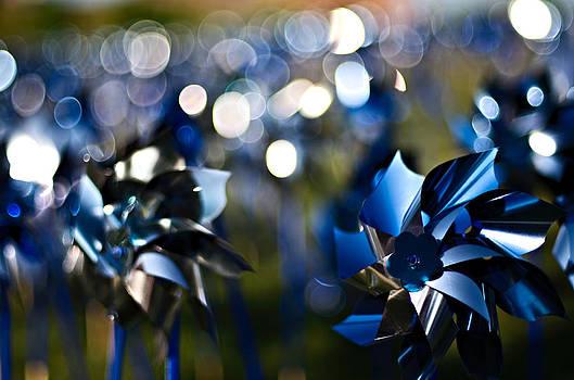 Field Of Pinwheels by Ian Wilson