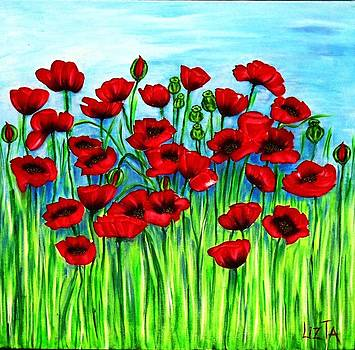 Field of Poppies by LizTa Gallery