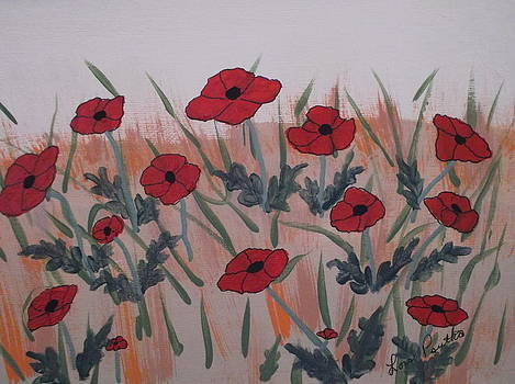 Field of Poppies by Lois D  Psutka