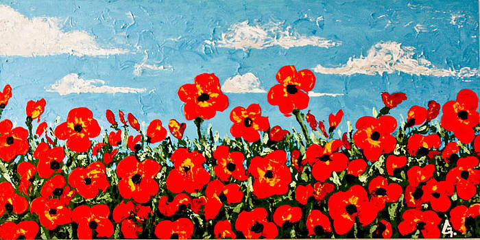 Field of poppies by Maria Iurescia