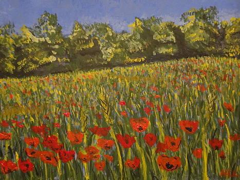 Field of Poppies by Paul Benson
