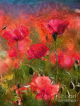 Scott B Bennett - Field of poppies