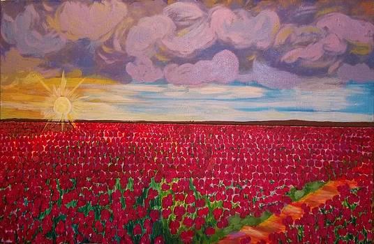 Field of tulips in Netherlands  by Soheila Madani