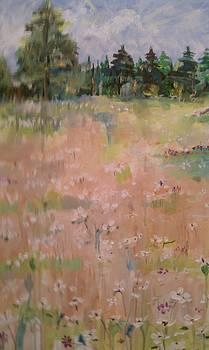 Field of white flowers by Paula Stacy Adams