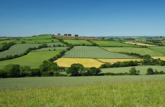 Field tapestry by Pete Hemington