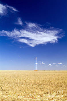 Tim Hester - Field with Pole