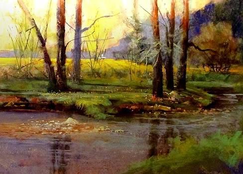 Fields Along Sunlight Creek by Joseph Barani
