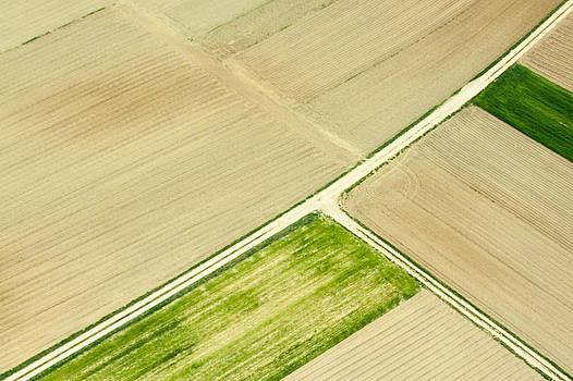 Fields in Spring 2 by Davorin Mance