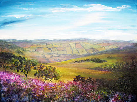 Fields of Derbyshire by Ann Marie Bone