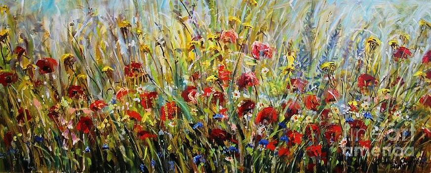 Fields Of Dreams by Dariusz Orszulik