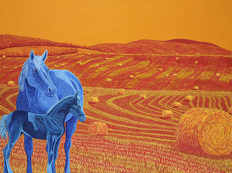Fields of Gold by Heather McLean