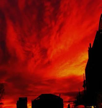Fierce Sky by Sharon Costa