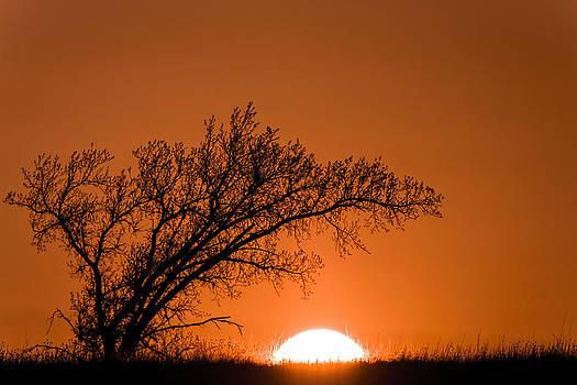 Scott Bean - Fiery Sunset