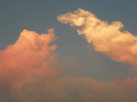 Fighting Clouds by Bernie Smolnik