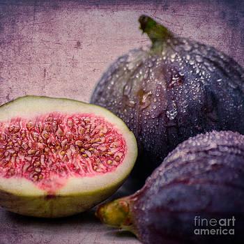 Figs 1x1 by Hannes Cmarits
