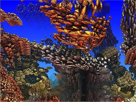 Fijian reef by Paul Deforrest