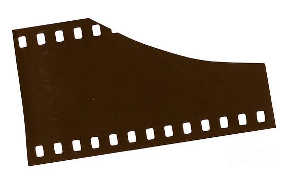 Tim Hester - Film