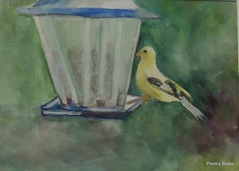 Finch by Betty Pimm