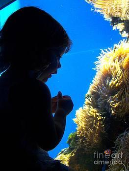 Christine Stack - Finding Nemo