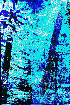 G Linsenmayer - FINE ART ORIGINAL DIGITAL FOREST SCENE MARYLAND